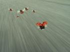 """Кадр из фильма """"Букашки. Приключение в Долине муравьев"""" Minuscule - La Vallée des fourmis perdues"""